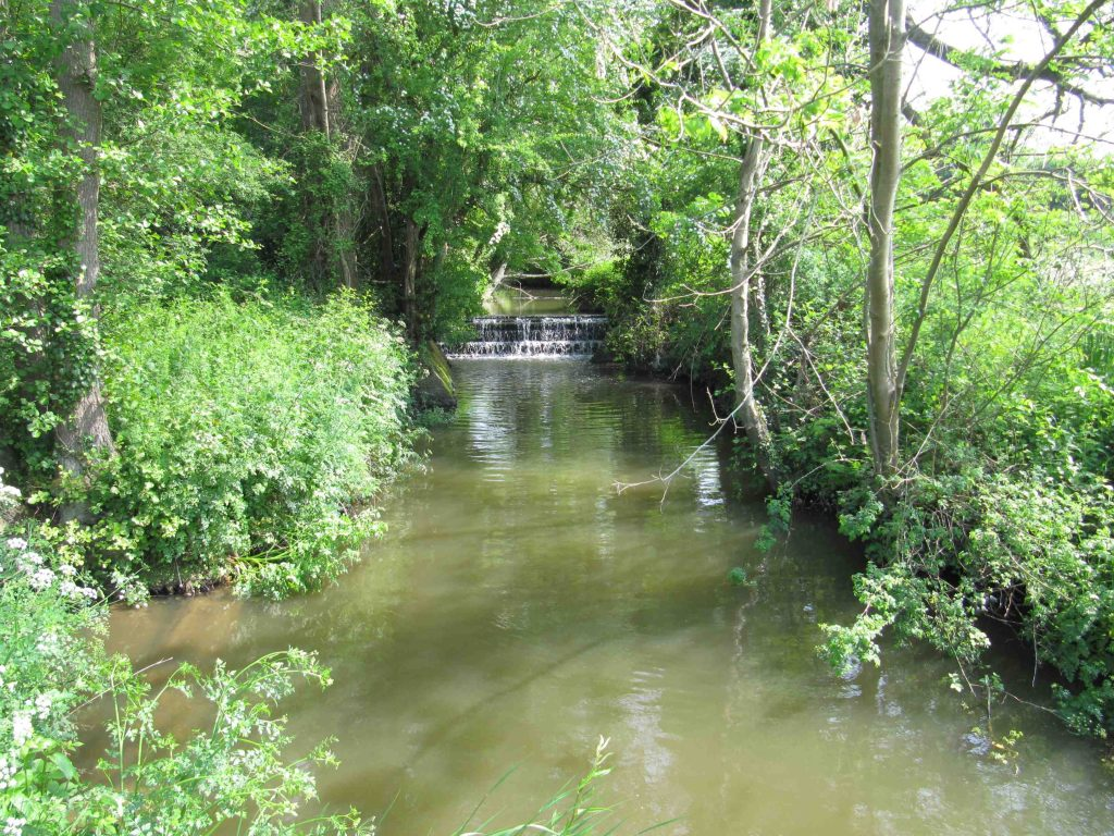 River Arun at Chesworth Farm