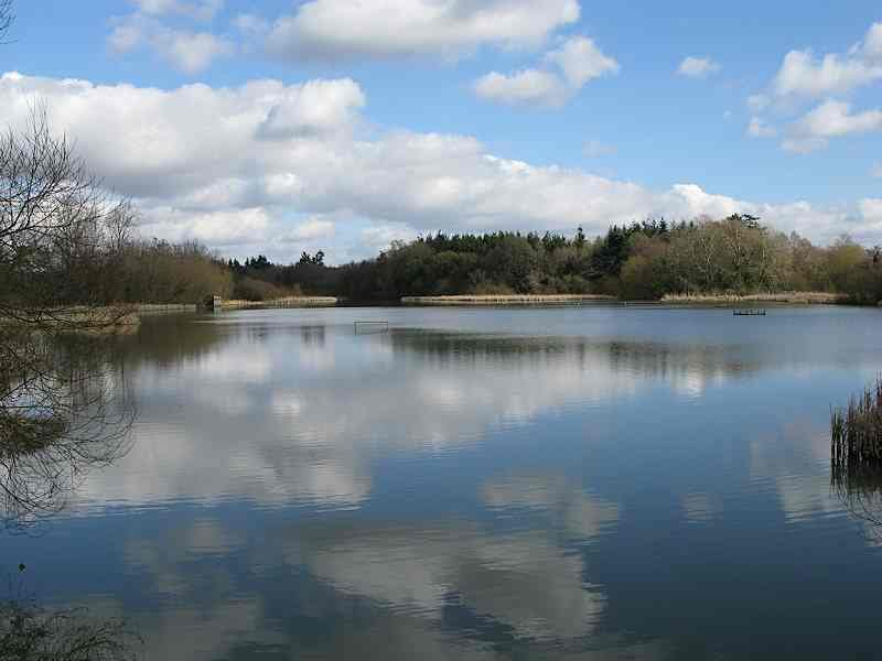Warnham Local Nature Reserve