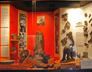 Horsham Museum