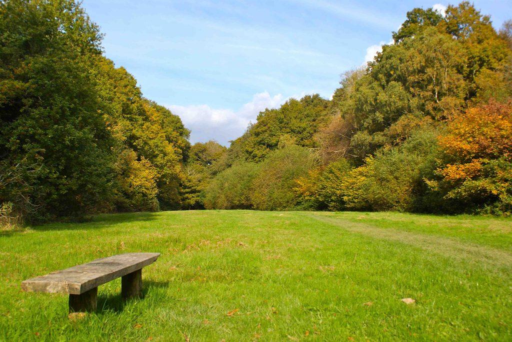 Horsham Riverside Walk near Grebe Crescent