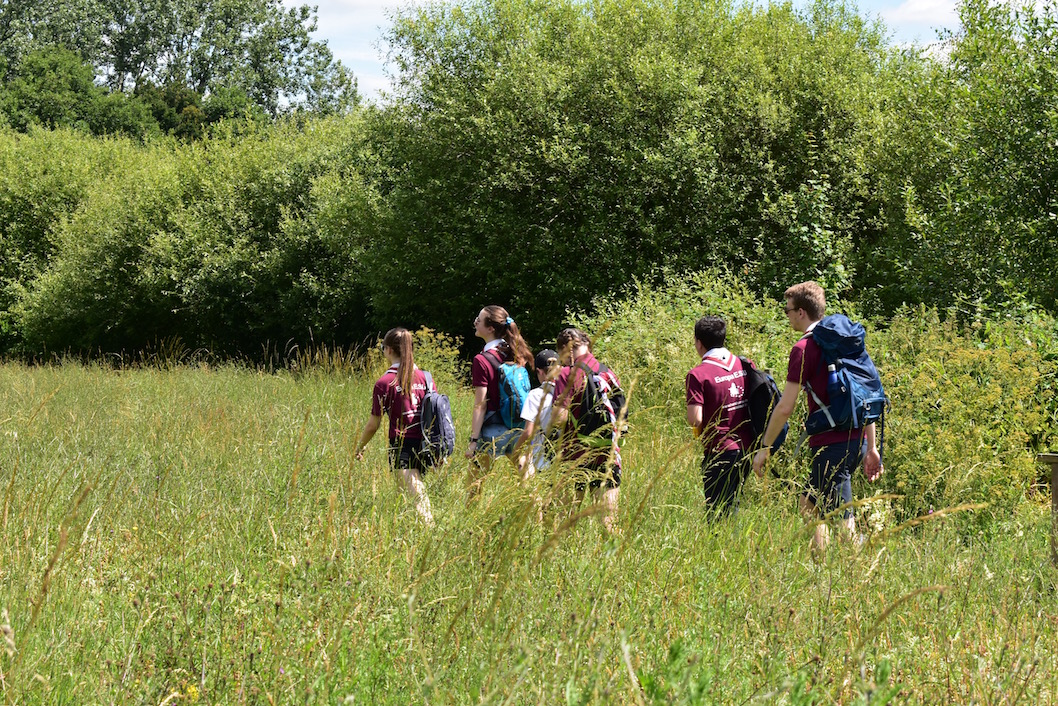 Scouts at Warnham Nature Reserve