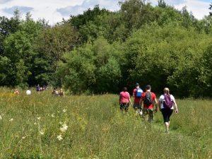 Walkers at Warnham Nature Reserve